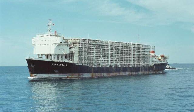 Barco ganadero